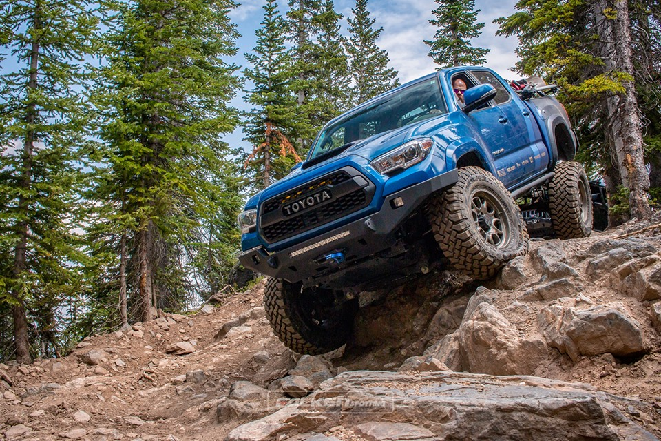 [AD] These are the Falken 4x4 tyres that won't compromise